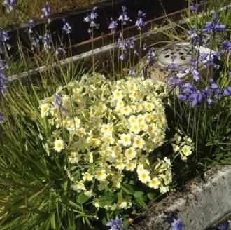 Stratford-upon-Avon Cemetery